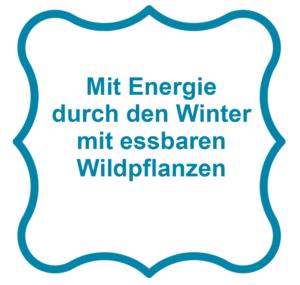 Mit Energie durch den Winter mit essbaren Wildpflanzen